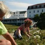 Star Island Gardeners